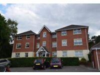 Great double, en-suite room for rent in Bracknell