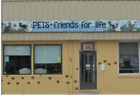 Volunteers needed for animal shelter in St. Thomas!  ****URGENT
