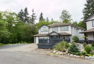 FOR SALE! 23907 115a Ave Maple Ridge $1,050,000 6 BED 3 BATH