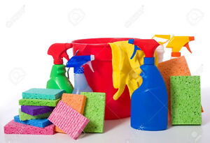 Can't keep up with the cleaning? Let me help!!! Kitchener / Waterloo Kitchener Area image 1