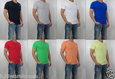 NWT Abercrombie Fitch Men A F Muscle Fit Bushnell Falls Tee V Neck T Shirt