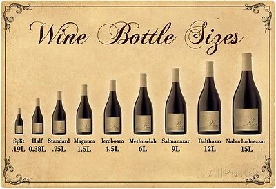 Wine Bottle Size Chart Poster Print  19X13