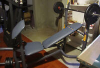 WORK OFF THANKSGIVING DINNER-Adjustable Competitor Weight Bench