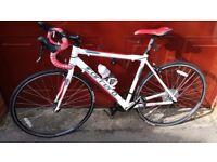 BRAND NEW NEVER USED Carrera Karkinos II Limited Edition Road Bike