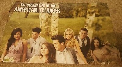 The Secret Life of the American Teenager cast (The Life Of The American Teenager Cast)