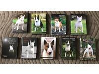 Bull terrier yearbook