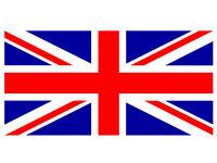 Clases de inglés con profesor nativo con experiencia