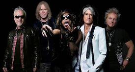 Aerosmith Farewell Tour, Dublin, 1x Standing ticket
