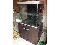 Fluval Osaka 150l fish tank