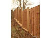 6ftx6ft featheredge panels -fence panels