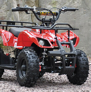 Electric atv for children - Up to 25 km/h, from $599.95