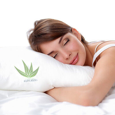 The Original Aloe Vera Infused Memory Foam Pillow Was: $79.99 Now: $18.99 and Free Shipping.