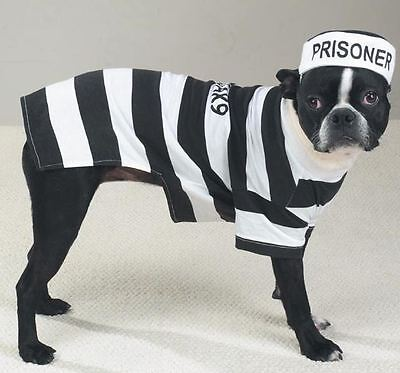 Casual K9  Prison Pooch Prisoner Dog Halloween Costume Pet Outfit Stripes - Prisoner Halloween Costumes For Dogs