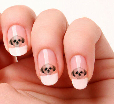 20 Nail Art Stickers Transfers Decals #658 - Shih Tzu dog peel & stick