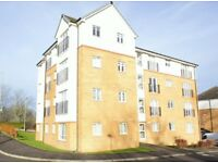 Two Bed Flat for Rent available immediately - 30 East Greenlees Gardens, G72 8DB