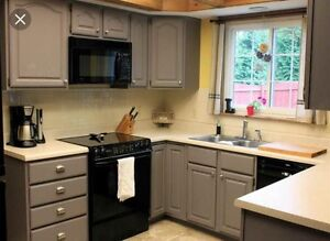 Looking for some used kitchen cabinets...