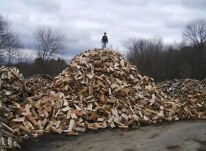 Dry Firewood, all hardwood, cut, split and delivered