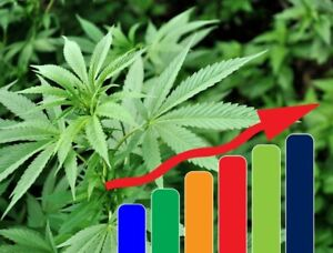 Offering Affordable Low-risk Investment in a Cannabis Company