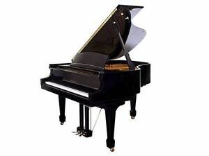 """6' 4"""" W.M Knabe Grand Piano WKG-64 Mint Condition Kingsgrove Canterbury Area Preview"""