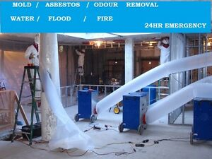 Asbestos Abatement / Removal Services
