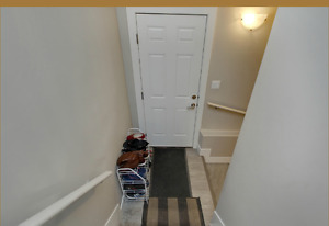 Basement suite for rent for 2 students to be shared
