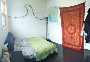 1 bedroom May-September central Halifax Robie St!