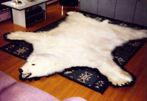 Genuine Polar Bear Rug