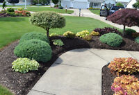 *COUPON * Limited Offer **Spring & Yearly Cleanup Packages/ Law