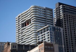LE PETERSON: New Luxury 1 Bedroom + Den Apt in Heart of Downtown