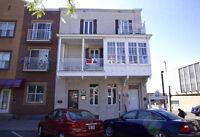 Triplex commercial (bureaux) et loft résidentiel 4 1/2