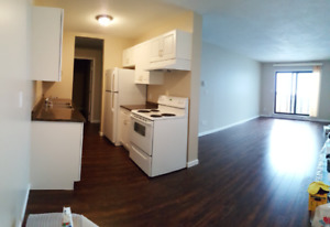 One or Two bedroom, renovated apartments, wood floors