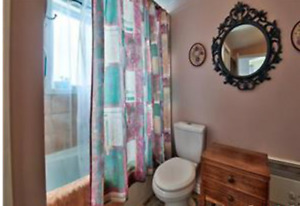4 1/2  APPARTMENT JULY 1 APPARTEMENT  $750 -CHATEAUGUAY
