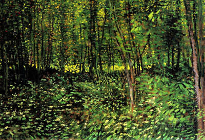 Vincent Van Gogh Trees and Undergrowth Forest Art Print Poster Poster, 19x13