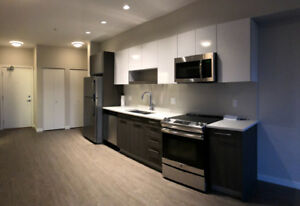 Super Brand New Penthouse 2 Bed 2 Bath close to Gateway Station
