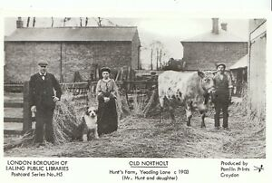 London-Postcard-Old-Northolt-Hunts-Farm-Yeading-Lane-c1903-U558