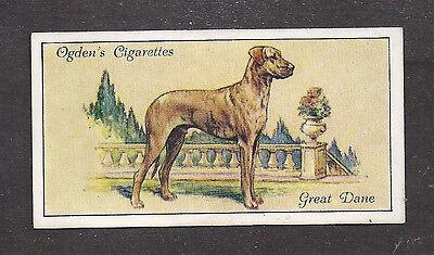 1936 UK Dog Art Full Body Portrait Ogden's Cigarette Card Brindle GREAT DANE