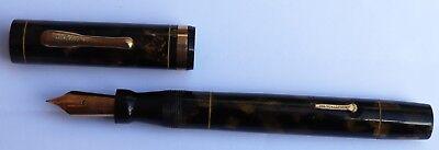Conklin Sr. Endura Fountain Pen