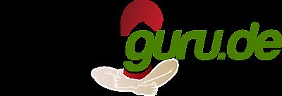 Ticket-Guru2.0