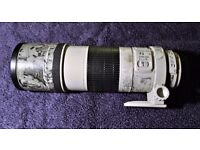 Canon EF 300mm lens