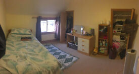 Professional house share Kings Lynn - Central