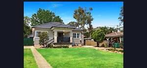 Home for lease in Glossodia Glossodia Hawkesbury Area Preview