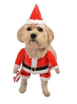 DOG Outfit ~  SANTA CLAUS ~  Christmas Themed ~ L Large (16-28