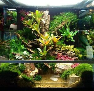 Looking for used exo terra terrariums varying sizes