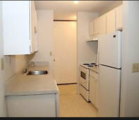 One Bedroom Apartment Available for Rent from June 1