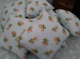Soft scatter cushions X8 3.00 each