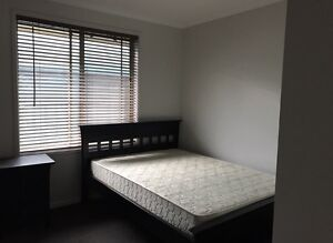 Room $150pw bills included St Agnes Tea Tree Gully Area Preview