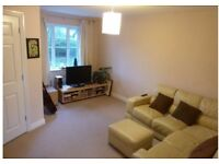 3 bedroom well presented house with garden in quiet estate in Honiton