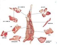 Naturally raised goat meat for sale