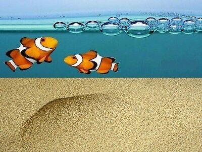 Aquariumsand gelblich 25 kg Aquarium Aquariensand Aquariumkies