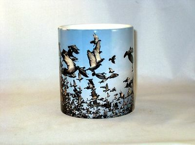 Racing Pigeon Fancier  Release Fantastic MUG